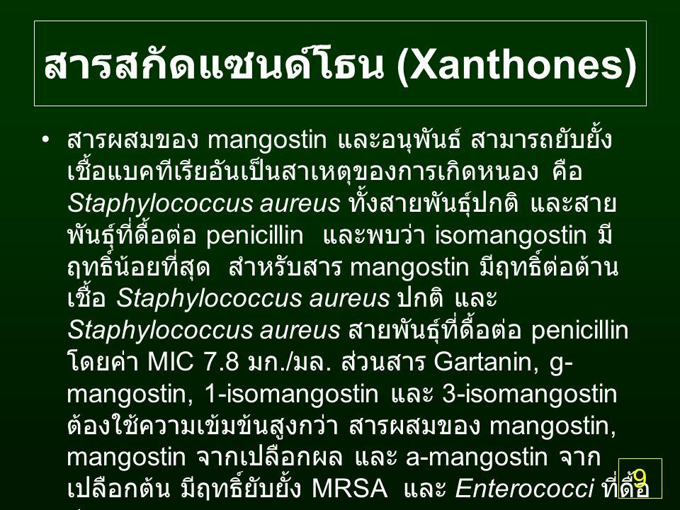 สารสกัดแซนด์โธน (Xanthones) สารผสมของ mangostin และอนุพันธ์ สามารถยับยั้ง เชื้อแบคทีเรียอันเป็นสาเหตุของการเกิดหนอง คือ Staphylococcus aureus ทั้งสายพันธุ์ปกติ และสาย พันธุ์ที่ดื้อต่อ penicillin และพบว่า isomangostin มี ฤทธิ์น้อยที่สุด สำหรับสาร mangostin มีฤทธิ์ต่อต้าน เชื้อ Staphylococcus aureus ปกติ และ Staphylococcus aureus สายพันธุ์ที่ดื้อต่อ penicillin โดยค่า MIC 7.8 มก./ มล.