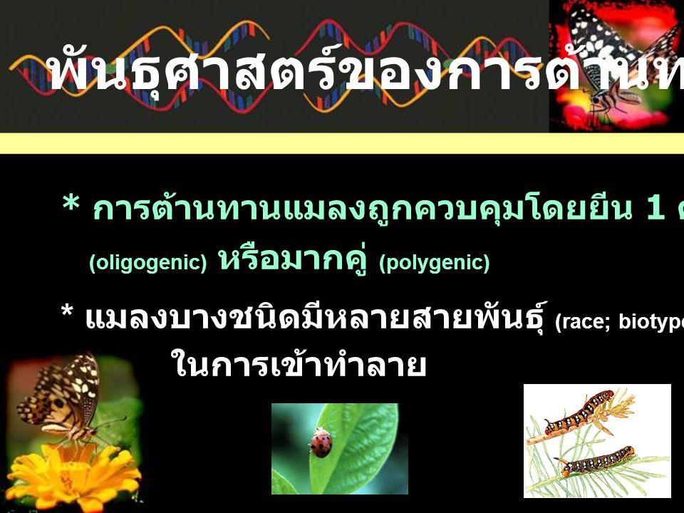 * การต้านทานแมลงถูกควบคุมโดยยีน 1 คู่ (monogenic) น้อยคู่ (oligogenic) หรือมากคู่ (polygenic) * แมลงบางชนิดมีหลายสายพันธุ์ (race; biotype) ซึ่งอาจมีความจำเพาะ ในการเข้าทำลาย พันธุศาสตร์ของการต้านทานแมลง