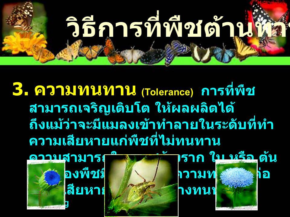 Mechanisms of resistance Antibiosis Antixenosis Tolerance มีผลต่อชีววิทยาของแมลง อัตราการเจริญเติบโต ความสมบูรณ์พันธุ์ ระยะเวลาในการพัฒนา มีผลต่อพฤติกรรมของแมลง อาหาร การวางไข่ การตอบสนองของพืชต่อการ เข้าทำลายของแมลง การซ่อมแซม การชดเชย การทนต่อบาดแผล