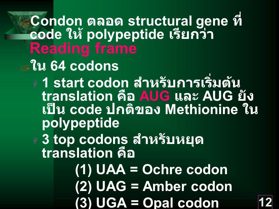 12  Condon ตลอด structural gene ที่ code ให้ polypeptide เรียกว่า Reading frame  ใน 64 codons  1 start codon สำหรับการเริ่มต้น translation คือ AUG และ AUG ยัง เป็น code ปกติของ Methionine ใน polypeptide  3 top codons สำหรับหยุด translation คือ (1) UAA = Ochre codon (2) UAG = Amber codon (3) UGA = Opal codon  60 codons สำหรับ amino acids อีก 19 ตัว