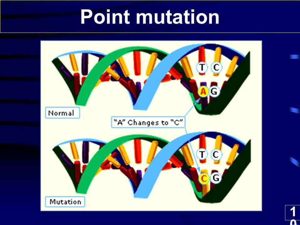 10 Point mutation