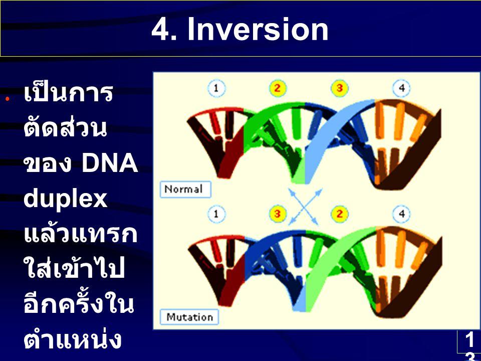 13 4. Inversion เป็นการ ตัดส่วน ของ DNA duplex แล้วแทรก ใส่เข้าไป อีกครั้งใน ตำแหน่ง เดิมแต่ สลับ ทิศทาง