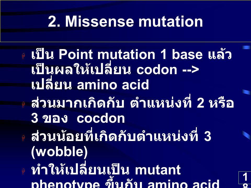 18 2. Missense mutation  เป็น Point mutation 1 base แล้ว เป็นผลให้เปลี่ยน codon --> เปลี่ยน amino acid  ส่วนมากเกิดกับ ตำแหน่งที่ 2 หรือ 3 ของ cocdo