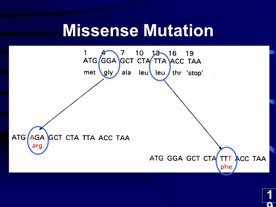 19 Missense Mutation