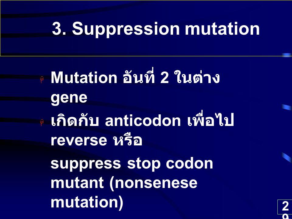 29 3. Suppression mutation  Mutation อันที่ 2 ในต่าง gene  เกิดกับ anticodon เพื่อไป reverse หรือ suppress stop codon mutant (nonsenese mutation)