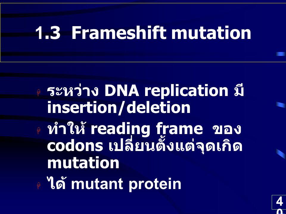 40 1.3 Frameshift mutation  ระหว่าง DNA replication มี insertion/deletion  ทำให้ reading frame ของ codons เปลี่ยนตั้งแต่จุดเกิด mutation  ได้ mutan