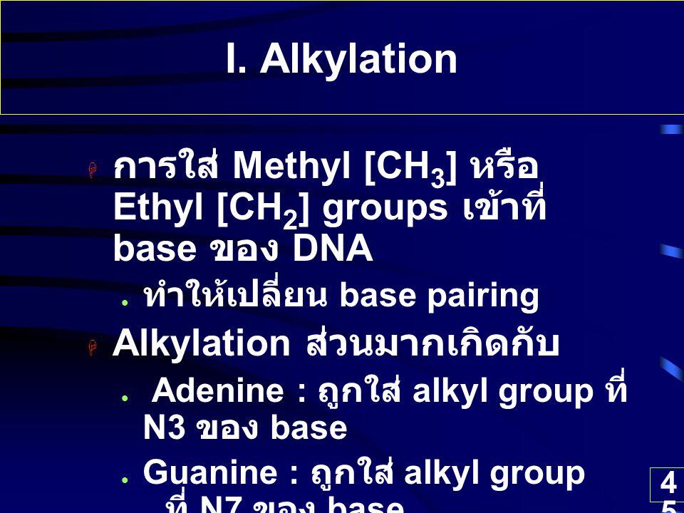 45 I. Alkylation  การใส่ Methyl [CH 3 ] หรือ Ethyl [CH 2 ] groups เข้าที่ base ของ DNA ทำให้เปลี่ยน base pairing  Alkylation ส่วนมากเกิดกับ Adenine