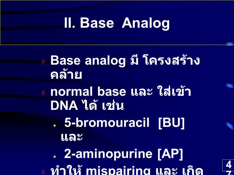 47 II. Base Analog  Base analog มี โครงสร้าง คล้าย  normal base และ ใส่เข้า DNA ได้ เช่น 5-bromouracil [BU] และ 2-aminopurine [AP]  ทำให้ mispairin