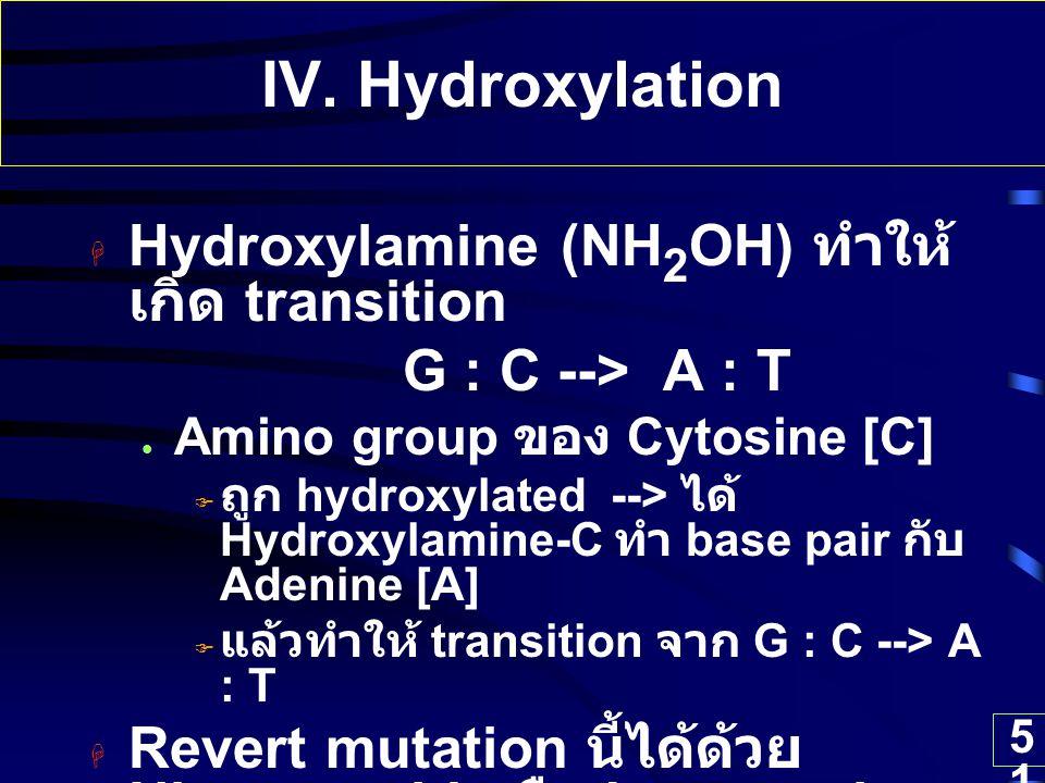 51 IV. Hydroxylation  Hydroxylamine (NH 2 OH) ทำให้ เกิด transition G : C --> A : T Amino group ของ Cytosine [C]  ถูก hydroxylated --> ได้ Hydroxyla