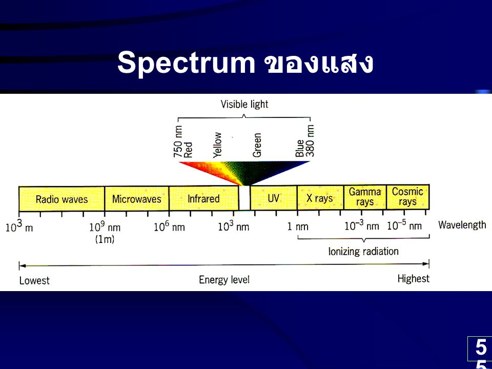 55 Spectrum ของแสง