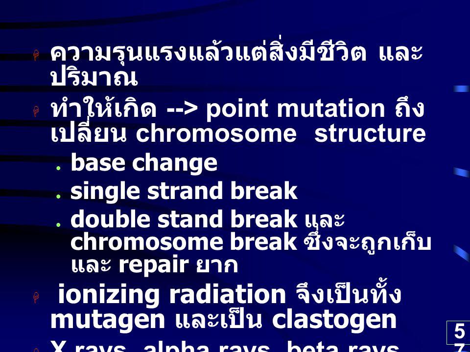 57  ความรุนแรงแล้วแต่สิ่งมีชีวิต และ ปริมาณ  ทำให้เกิด --> point mutation ถึง เปลี่ยน chromosome structure base change single strand break double st