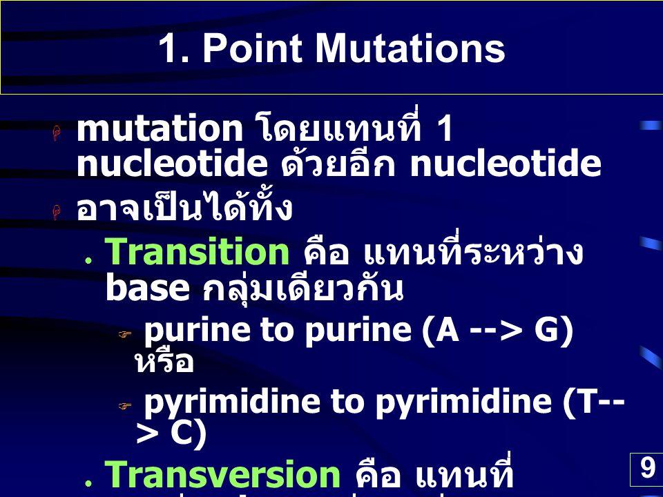 9 1. Point Mutations  mutation โดยแทนที่ 1 nucleotide ด้วยอีก nucleotide  อาจเป็นได้ทั้ง Transition คือ แทนที่ระหว่าง base กลุ่มเดียวกัน  purine to