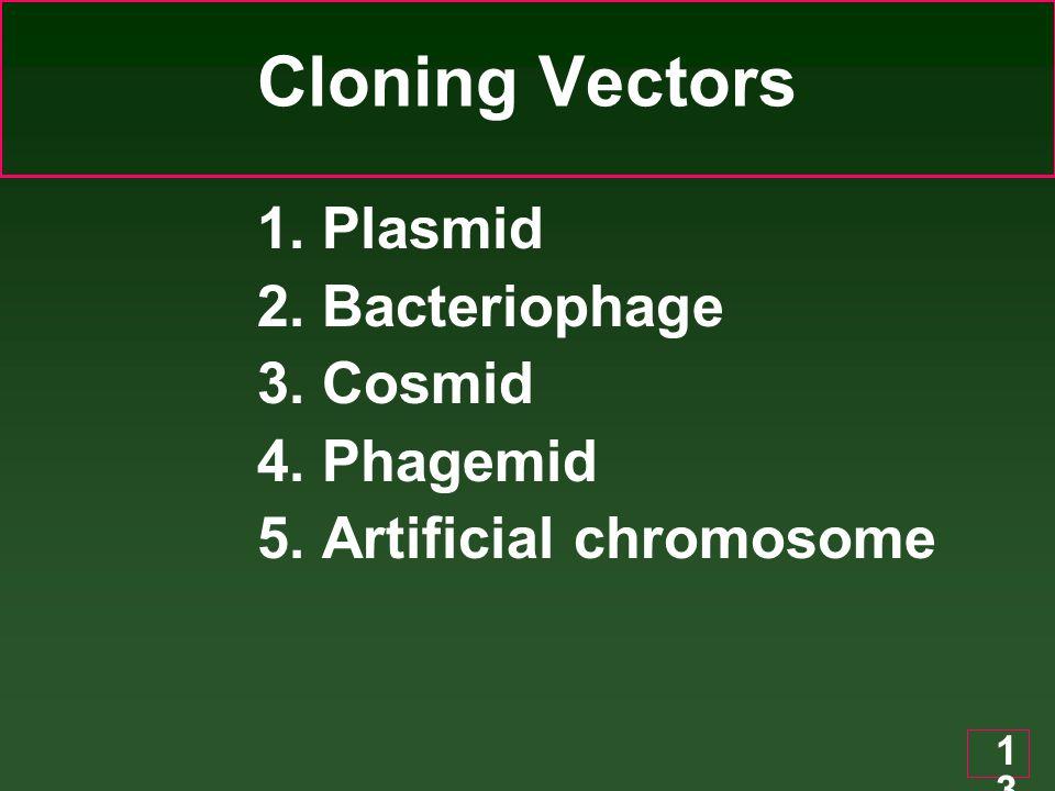 13 Cloning Vectors 1. Plasmid 2. Bacteriophage 3. Cosmid 4. Phagemid 5. Artificial chromosome