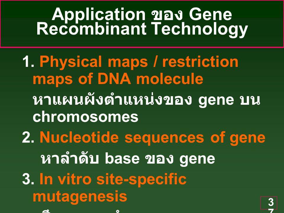 37 Application ของ Gene Recombinant Technology 1.