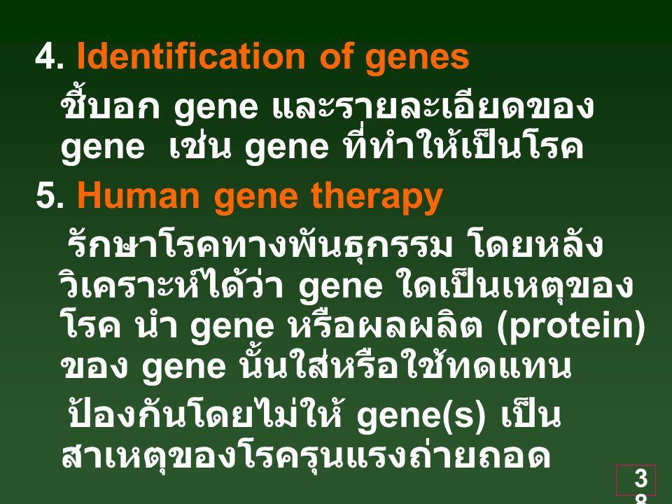 38 4.Identification of genes ชี้บอก gene และรายละเอียดของ gene เช่น gene ที่ทำให้เป็นโรค 5.