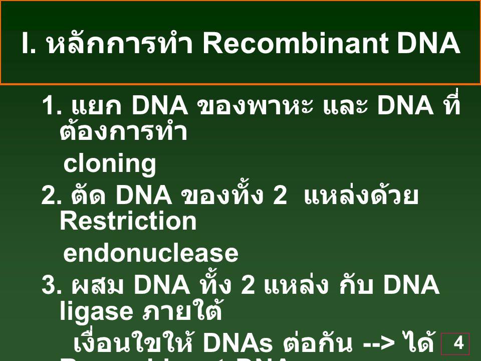 4 I.หลักการทำ Recombinant DNA 1. แยก DNA ของพาหะ และ DNA ที่ ต้องการทำ cloning 2.