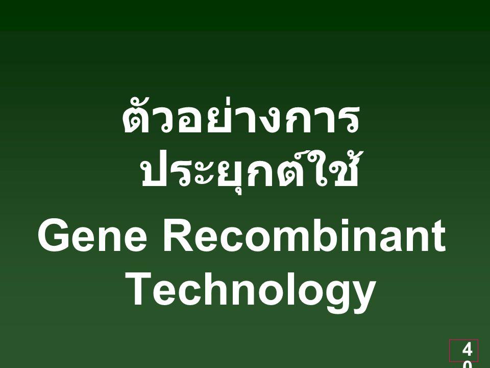 40 ตัวอย่างการ ประยุกต์ใช้ Gene Recombinant Technology