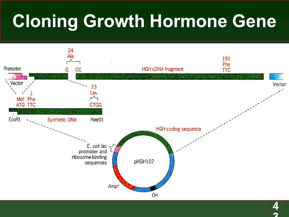 43 Cloning Growth Hormone Gene