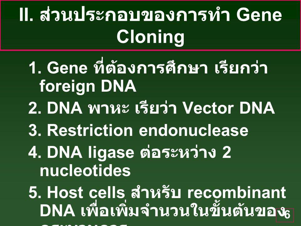 6 II.ส่วนประกอบของการทำ Gene Cloning 1. Gene ที่ต้องการศึกษา เรียกว่า foreign DNA 2.