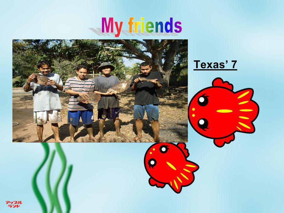Texas' 7