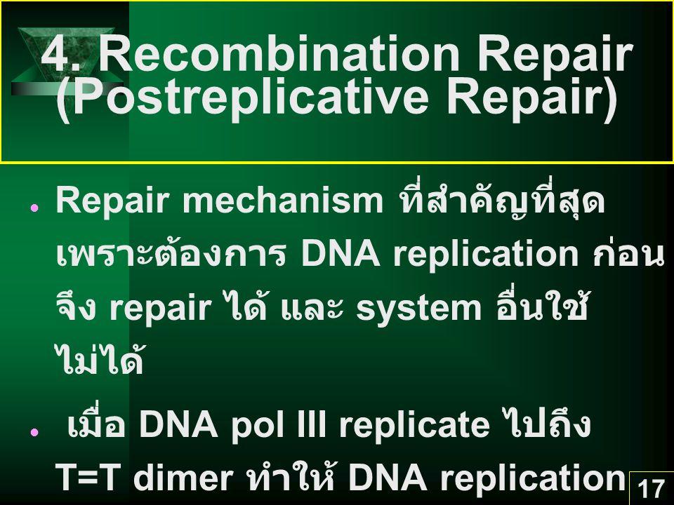 17 4. Recombination Repair (Postreplicative Repair) Repair mechanism ที่สำคัญที่สุด เพราะต้องการ DNA replication ก่อน จึง repair ได้ และ system อื่นใช