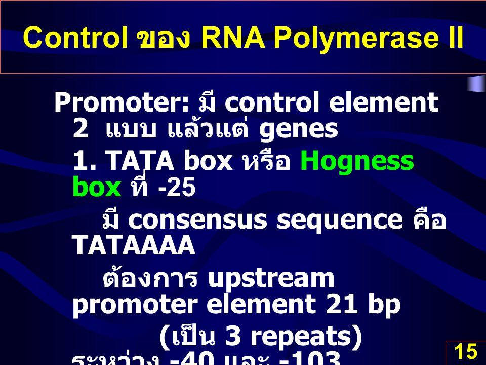 15 Control ของ RNA Polymerase II Promoter: มี control element 2 แบบ แล้วแต่ genes 1. TATA box หรือ Hogness box ที่ -25 มี consensus sequence คือ TATAA