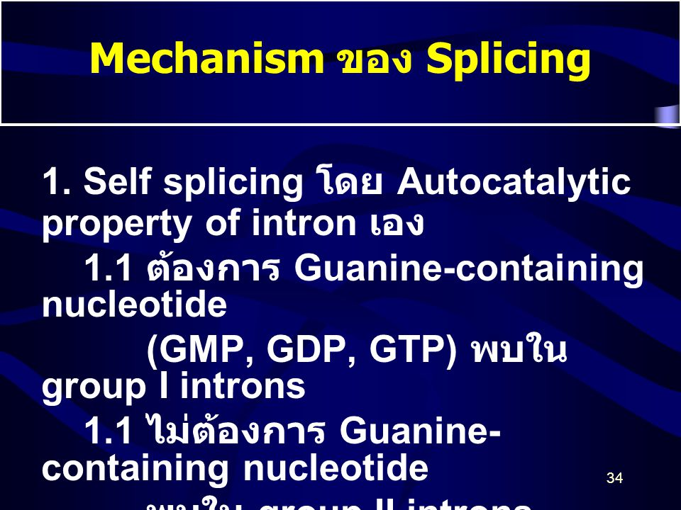 34 Mechanism ของ Splicing 1. Self splicing โดย Autocatalytic property of intron เอง 1.1 ต้องการ Guanine-containing nucleotide (GMP, GDP, GTP) พบใน gro