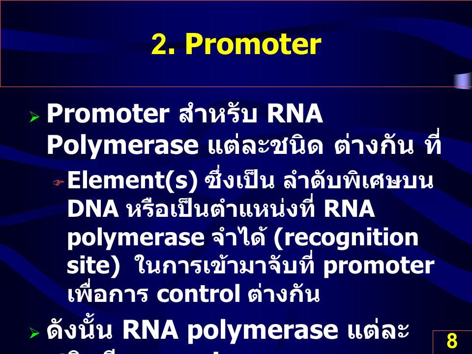 8 2. Promoter  Promoter สำหรับ RNA Polymerase แต่ละชนิด ต่างกัน ที่  Element(s) ซึ่งเป็น ลำดับพิเศษบน DNA หรือเป็นตำแหน่งที่ RNA polymerase จำได้ (r