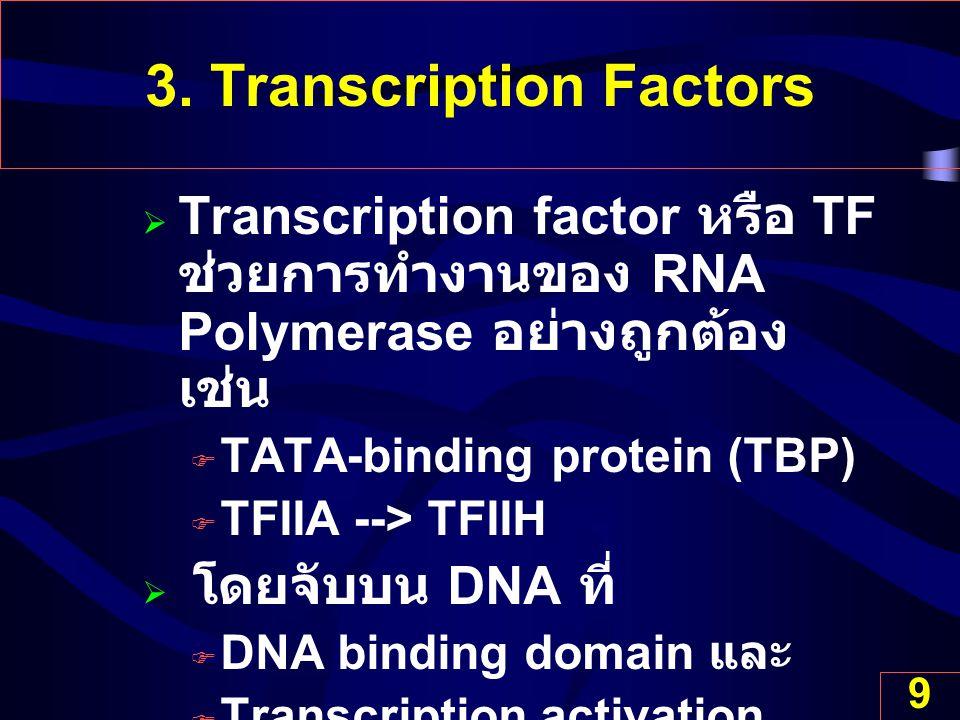 9 3. Transcription Factors  Transcription factor หรือ TF ช่วยการทำงานของ RNA Polymerase อย่างถูกต้อง เช่น  TATA-binding protein (TBP)  TFIIA --> TF