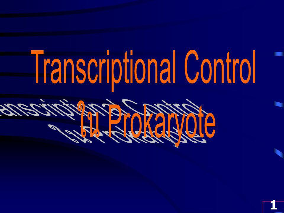 2 Transcriptional Control in Prokaryotic Cell 1.