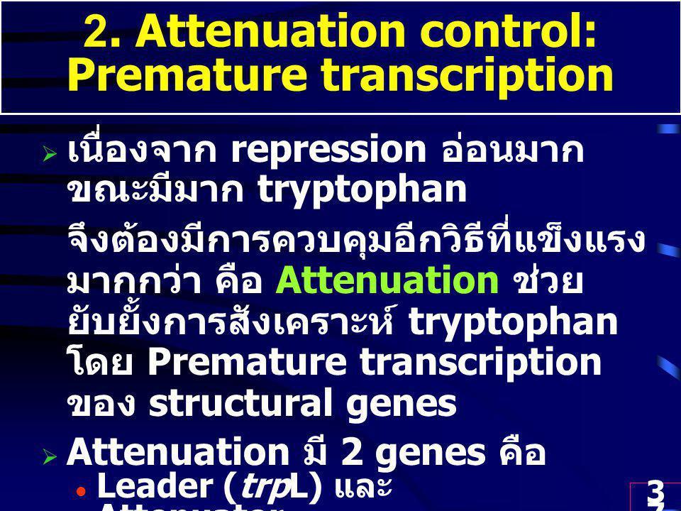 37 2. Attenuation control: Premature transcription  เนื่องจาก repression อ่อนมาก ขณะมีมาก tryptophan จึงต้องมีการควบคุมอีกวิธีที่แข็งแรง มากกว่า คือ