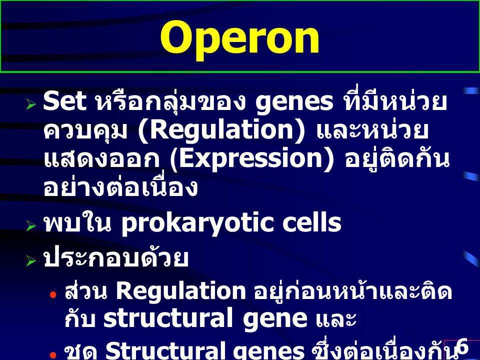 6 Operon  Set หรือกลุ่มของ genes ที่มีหน่วย ควบคุม (Regulation) และหน่วย แสดงออก (Expression) อยู่ติดกัน อย่างต่อเนื่อง  พบใน prokaryotic cells  ประกอบด้วย ส่วน Regulation อยู่ก่อนหน้าและติด กับ structural gene และ ชุด Structural genes ซึ่งต่อเนื่องกัน เป็น polycistronic gene