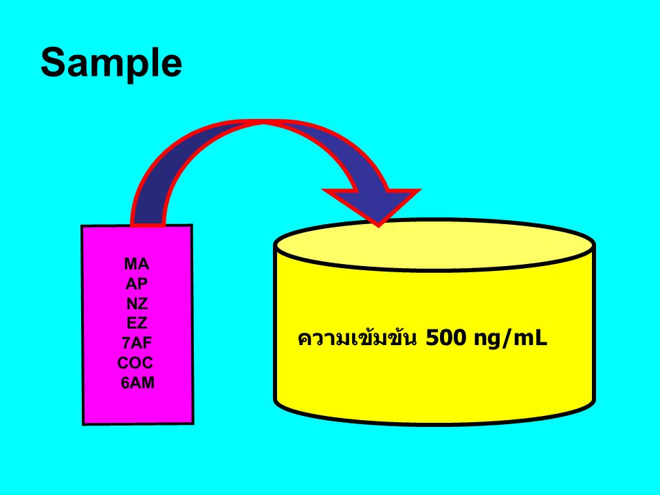 Sample ความเข้มข้น 500 ng/mL MA AP NZ EZ 7AF COC 6AM