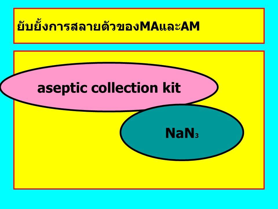 ยับยั้งการสลายตัวของMAและAM aseptic collection kit NaN 3