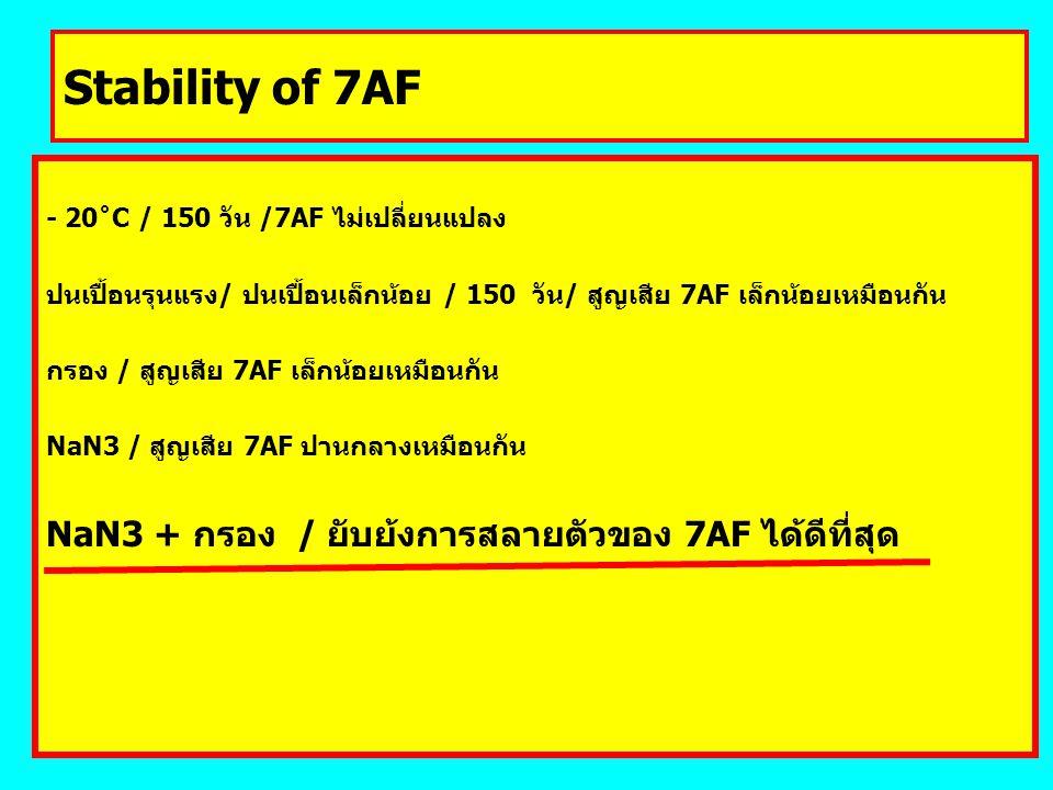 Stability of 7AF - 20˚C / 150 วัน /7AF ไม่เปลี่ยนแปลง ปนเปื้อนรุนแรง/ ปนเปื้อนเล็กน้อย / 150 วัน/ สูญเสีย 7AF เล็กน้อยเหมือนกัน กรอง / สูญเสีย 7AF เล็