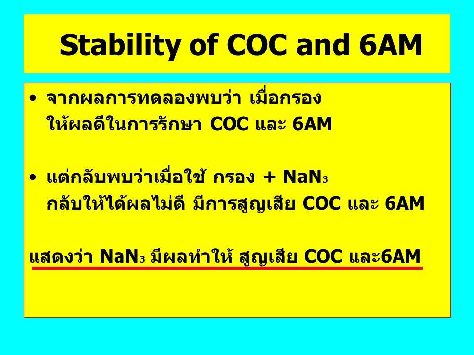 Stability of COC and 6AM จากผลการทดลองพบว่า เมื่อกรอง ให้ผลดีในการรักษา COC และ 6AM แต่กลับพบว่าเมื่อใช้ กรอง + NaN 3 กลับให้ได้ผลไม่ดี มีการสูญเสีย C