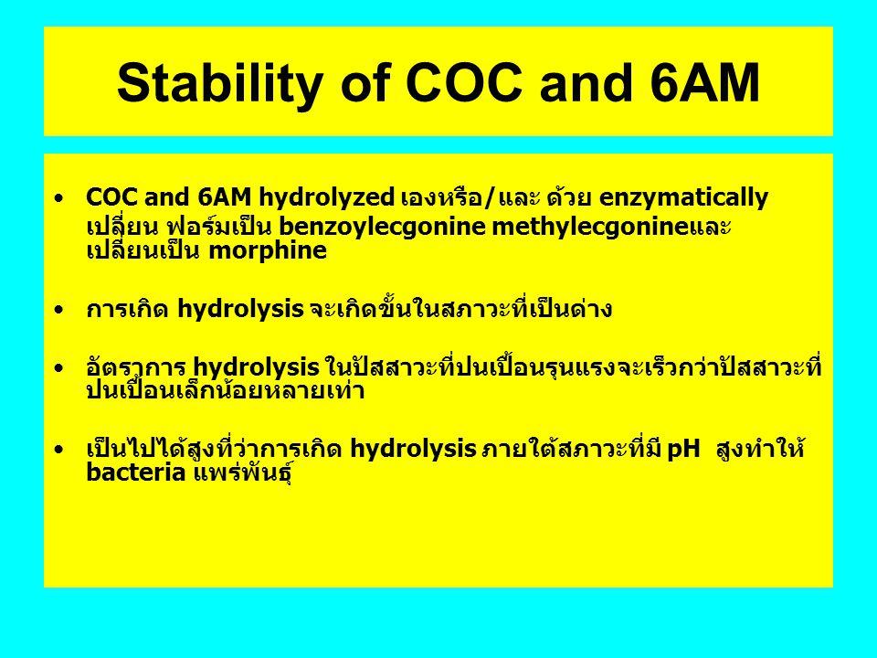 Stability of COC and 6AM COC and 6AM hydrolyzed เองหรือ/และ ด้วย enzymatically เปลี่ยน ฟอร์มเป็น benzoylecgonine methylecgonineและ เปลี่ยนเป็น morphin