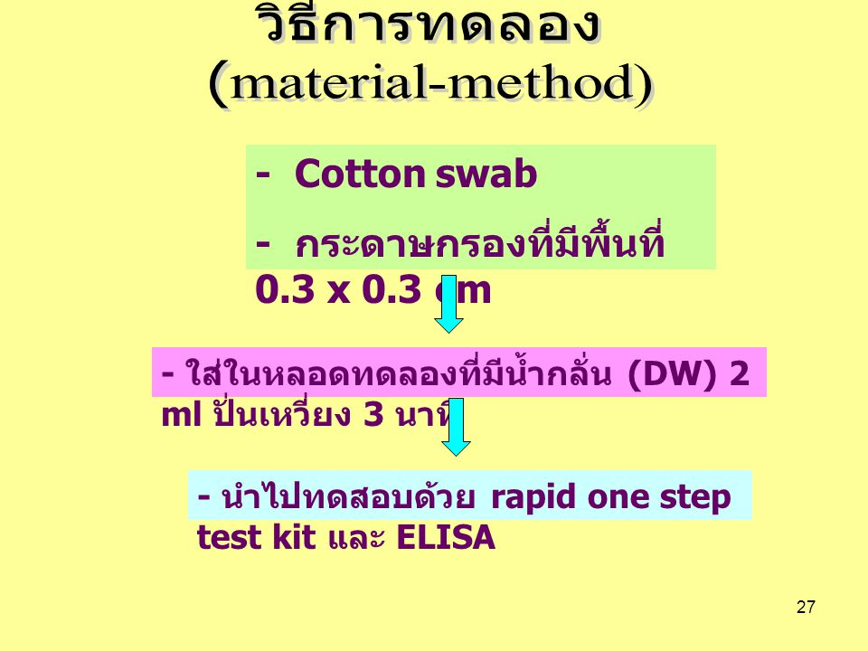 27 - Cotton swab - กระดาษกรองที่มีพื้นที่ 0.3 x 0.3 cm - ใส่ในหลอดทดลองที่มีน้ำกลั่น (DW) 2 ml ปั่นเหวี่ยง 3 นาที - นำไปทดสอบด้วย rapid one step test kit และ ELISA