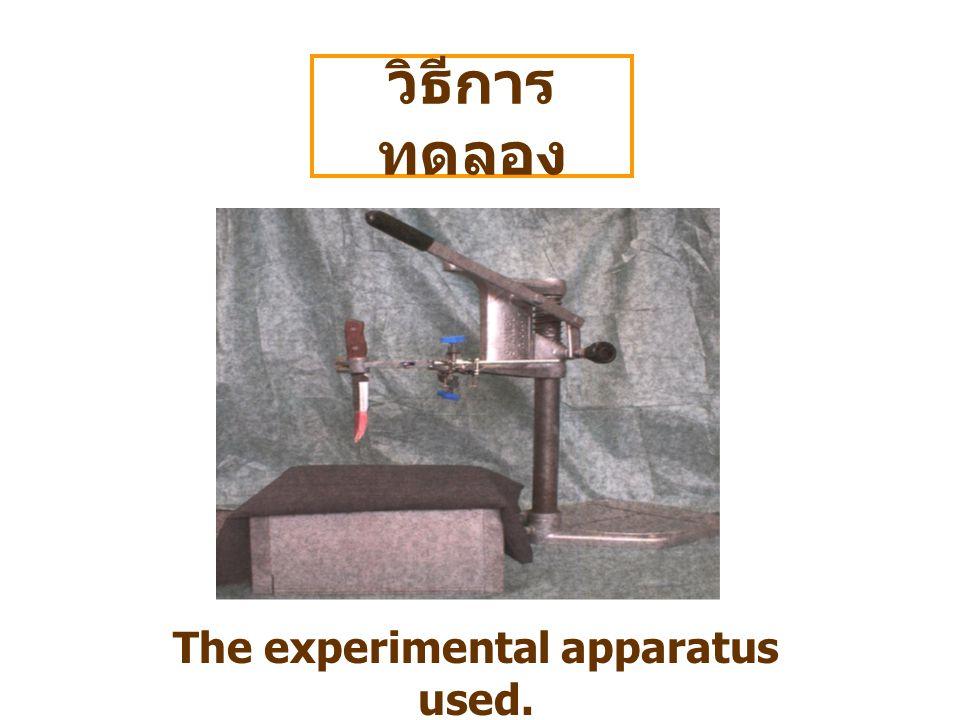วิธีการ ทดลอง The experimental apparatus used.