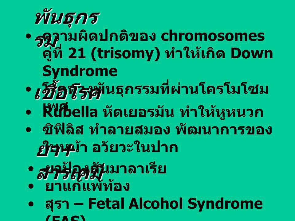 พันธุกร รม ความผิดปกติของ chromosomes คู่ที่ 21 (trisomy) ทำให้เกิด Down Syndrome โรคทางพันธุกรรมที่ผ่านโครโมโซม เพศ เชื้อโรค Rubella หัดเยอรมัน ทำให้