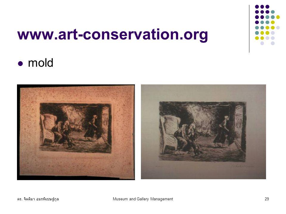 ดร. จิตติมา อมรพิเชษฐ์กูล Museum and Gallery Management29 www.art-conservation.org mold