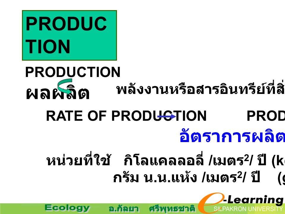 PRODUC TION ผลผลิต PRODUCTION พลังงานหรือสารอินทรีย์ที่สิ่งมีชีวิตสร้างขึ้น RATE OF PRODUCTION PRODUCTIVITY หน่วยที่ใช้ กิโลแคลลอลี่ / เมตร 2 / ปี (kc