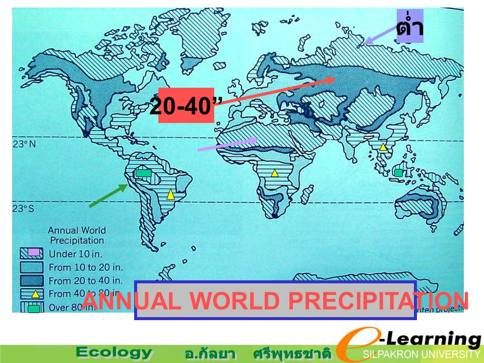 ANNUAL WORLD PRECIPITATION ต่ำ 20-40