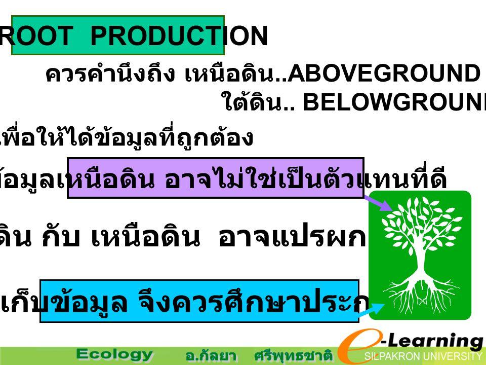 4. ROOT PRODUCTION ควรคำนึงถึง เหนือดิน..ABOVEGROUND & ใต้ดิน.. BELOWGROUND PRODUCTIVITY เพื่อให้ได้ข้อมูลที่ถูกต้อง ใต้ดิน กับ เหนือดิน อาจแปรผกผันกั