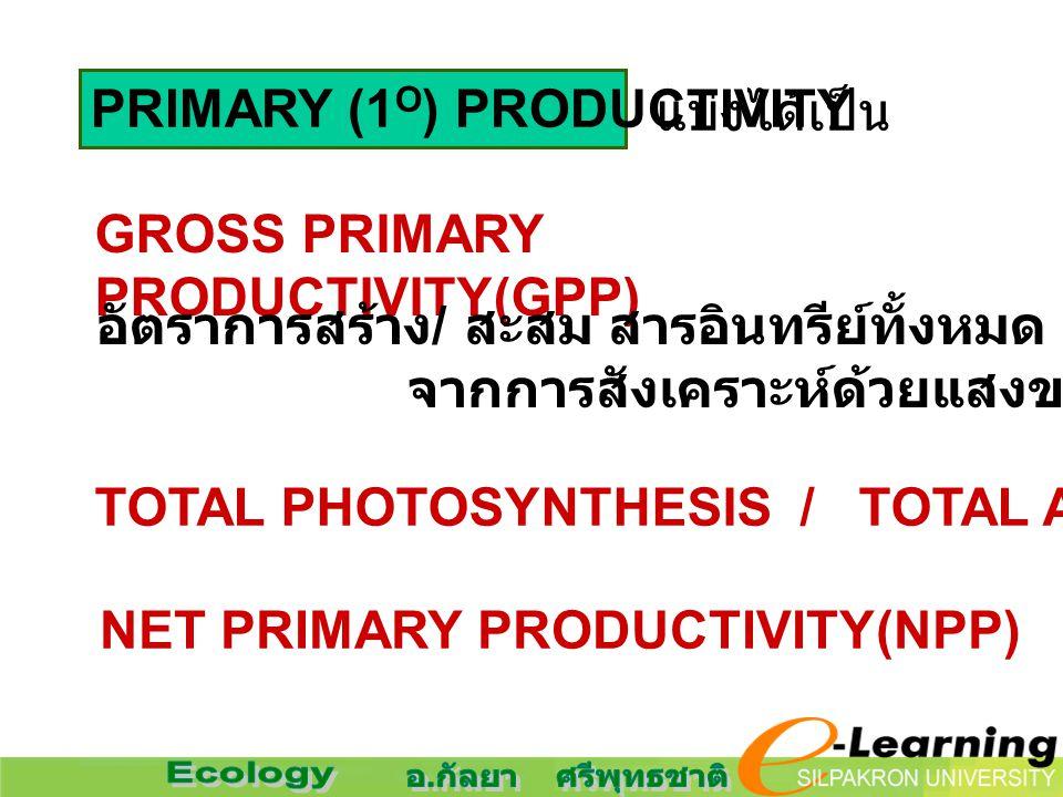 PRIMARY (1 O ) PRODUCTIVITY แบ่งได้เป็น GROSS PRIMARY PRODUCTIVITY(GPP) อัตราการสร้าง / สะสม สารอินทรีย์ทั้งหมด จากการสังเคราะห์ด้วยแสงของผู้ผลิต NET