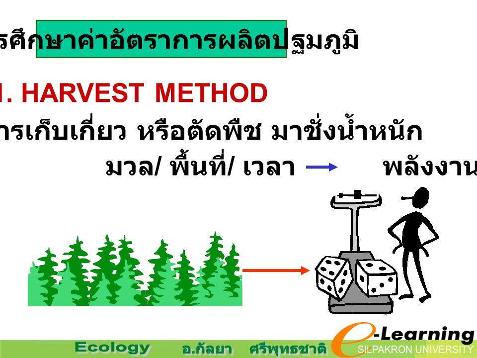 การศึกษาค่าอัตราการผลิตปฐมภูมิ 1. HARVEST METHOD การเก็บเกี่ยว หรือตัดพืช มาชั่งน้ำหนัก มวล / พื้นที่ / เวลา พลังงาน