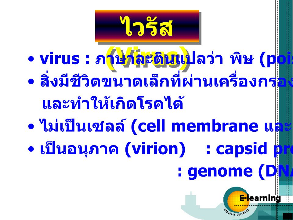 ไวรัส (Virus) virus : ภาษาละตินแปลว่า พิษ (poison) สิ่งมีชีวิตขนาดเล็กที่ผ่านเครื่องกรองแบคทีเรีย และทำให้เกิดโรคได้ ไม่เป็นเซลล์ (cell membrane และ p