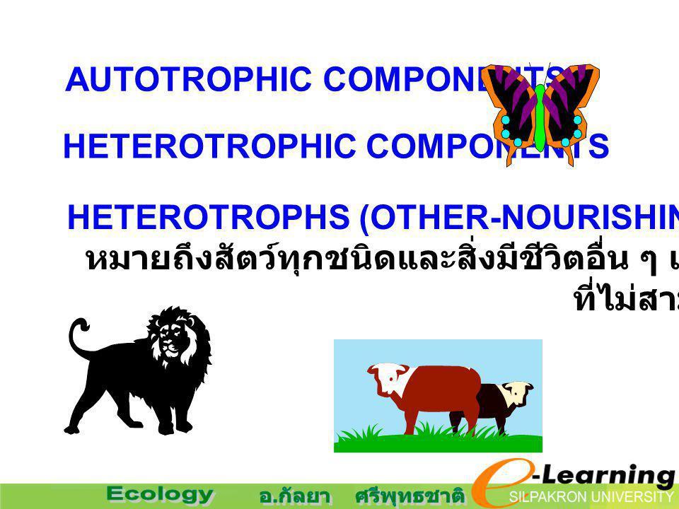HETEROTROPHS (OTHER-NOURISHING) หมายถึงสัตว์ทุกชนิดและสิ่งมีชีวิตอื่น ๆ เช่น รา และแบคทีเรีย ที่ไม่สามารถสร้างอาหารได้เอง AUTOTROPHIC COMPONENTS HETER