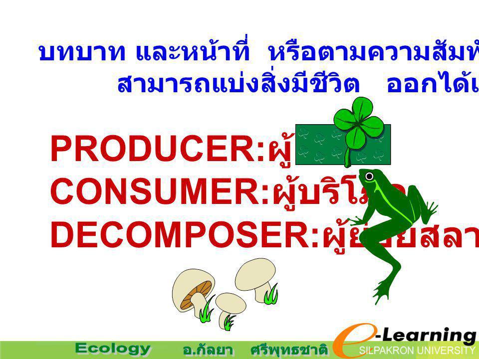 บทบาท และหน้าที่ หรือตามความสัมพันธ์เชิงอาหาร สามารถแบ่งสิ่งมีชีวิต ออกได้เป็น PRODUCER: ผู้ผลิต CONSUMER: ผู้บริโภค DECOMPOSER: ผู้ย่อยสลาย