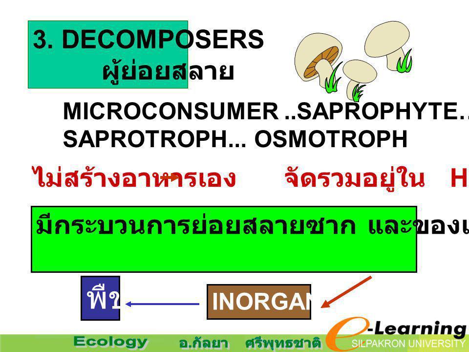 3. DECOMPOSERS ผู้ย่อยสลาย MICROCONSUMER..SAPROPHYTE… SAPROTROPH... OSMOTROPH ไม่สร้างอาหารเอง จัดรวมอยู่ใน HETEROTROPHS มีกระบวนการย่อยสลายซาก และของ